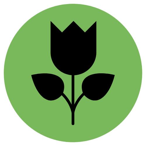 Fleurs &Déco