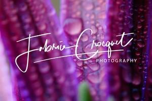 Fabrice Croquet Photographie